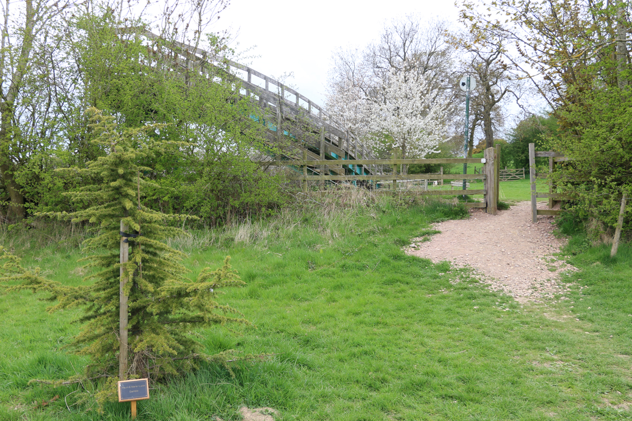 View of footbridge over canal from Under Crick Hill, Spring 2015