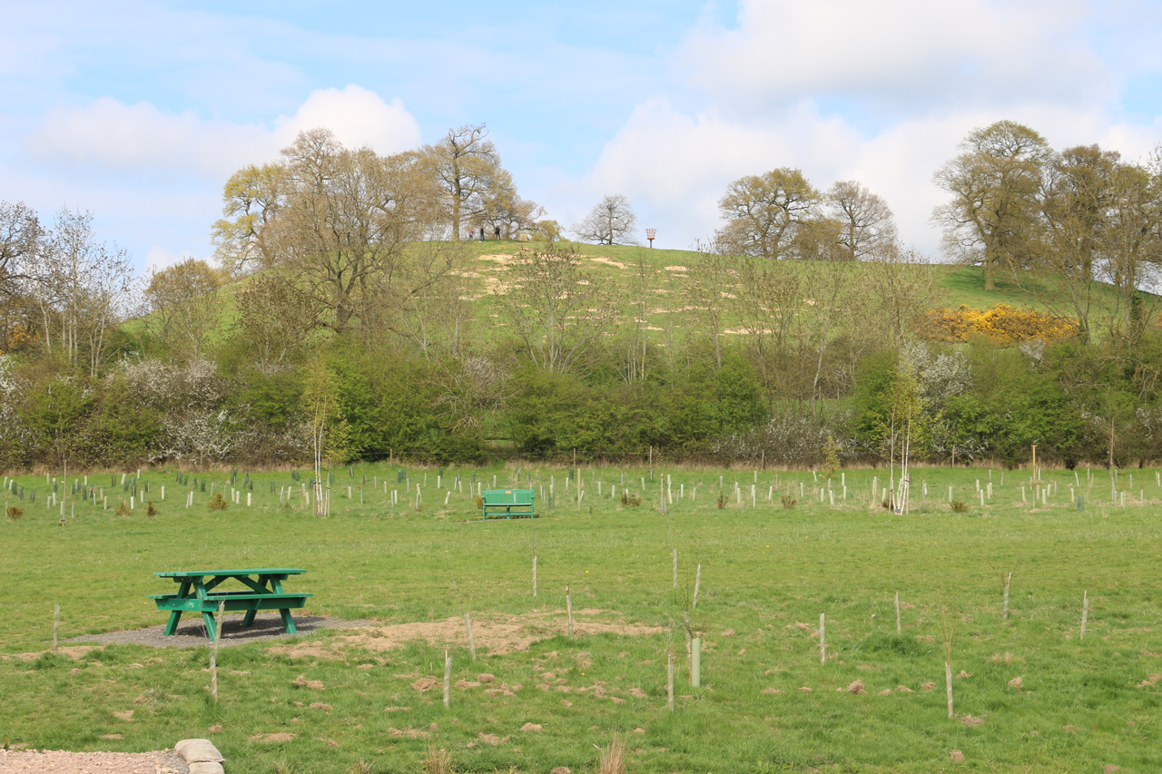 View of Cracks Hill from Under Crick Hill, Spring 2015