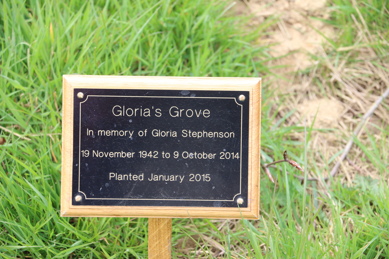 Plaque marking Gloria's Grove, Brims Hill, Spring 2015