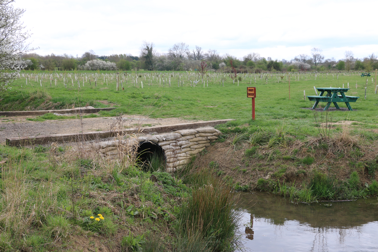 Pond and culvert crossing into Warm Brook, Spring 2015